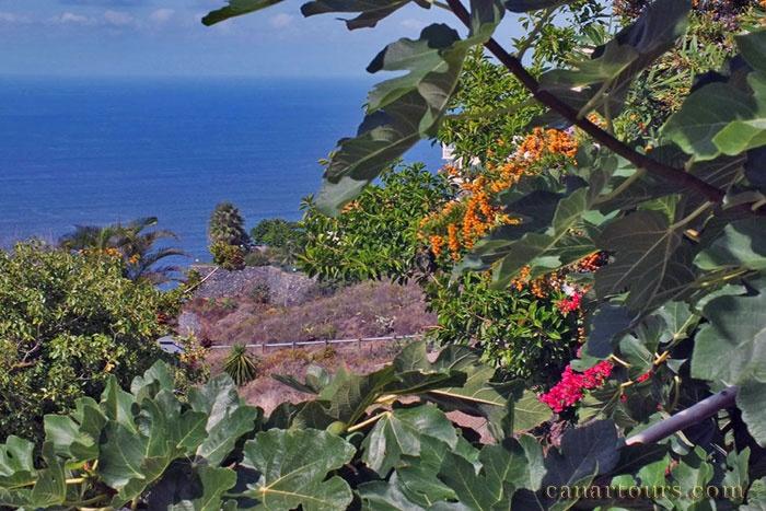 Tenerife-El Sausal-La Escalera-Holiday on Tenerife